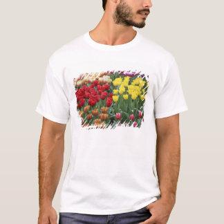 T-shirt Pays-Bas, jardins de Keukenhoff, tulipes