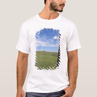 T-shirt Paysage avec Cypress