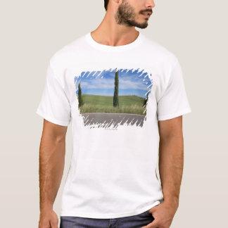 T-shirt Paysage avec des cyprès