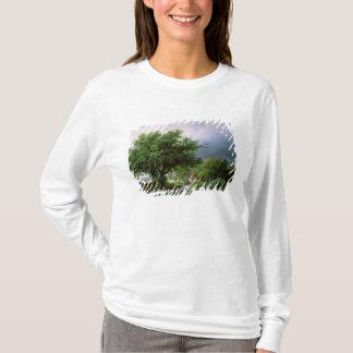 T-shirt Paysage avec un moulin