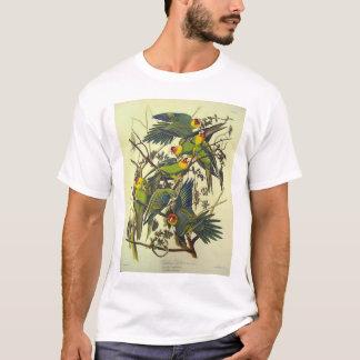 T-shirt Perroquet de la Caroline