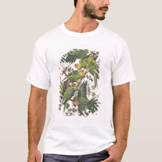 """T-shirt Perruche de Caroline, des """"oiseaux de l'Amérique"""","""