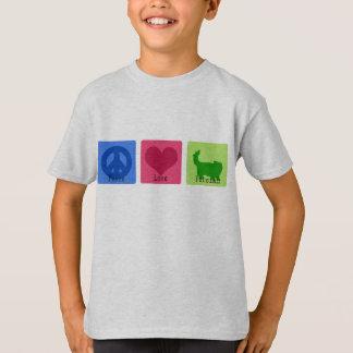T-shirt Persan d'amour de paix