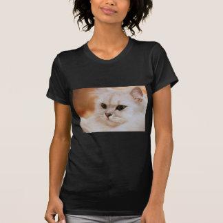 T-shirt Persans de chinchilla de ~ de Freddie