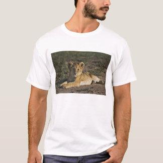 T-shirt Petit animal de lion, Panthera Lion, se situant