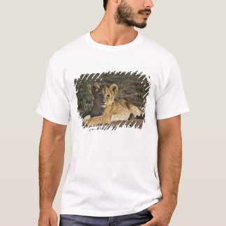 T-shirt Petit animal de lion, Panthera Lion, se situant