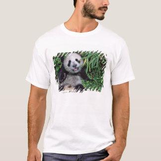 T-shirt Petit animal de panda dans le verger en bambou,