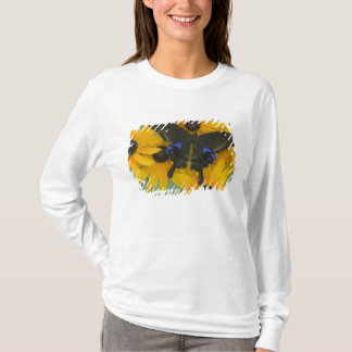 T-shirt Photographie de Sammamish Washington du papillon