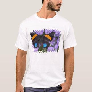 T-shirt Photographie de Sammamish Washington du papillon 3