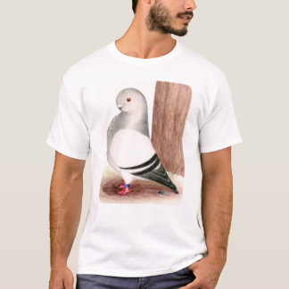 T-shirt Pigeon africain bleu de hibou
