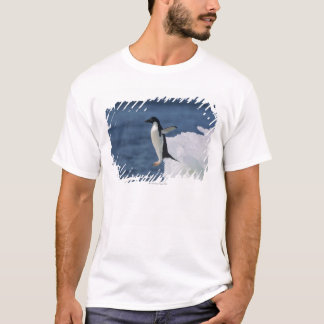 T-shirt Pingouin d'Adelie sautant de l'iceberg