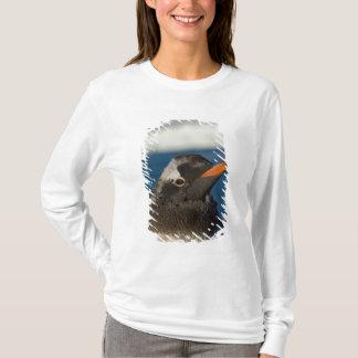 T-shirt pingouin de gentoo, Pygoscelis Papouasie, poussin