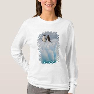 T-shirt pingouin de gentoo, Pygoscelis Papouasie, sur la