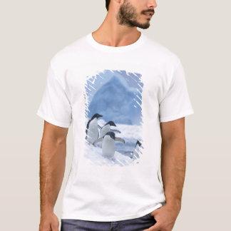 T-shirt Pingouins d'Adelie (adeliae de Pygoscelis) sur la