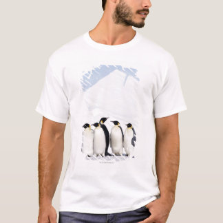 T-shirt Pingouins d'empereur