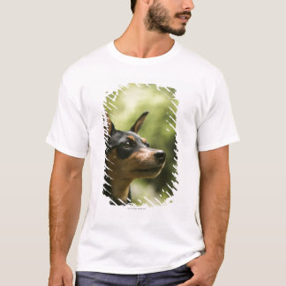 T-shirt Pinscher miniature (Minute-Pin)