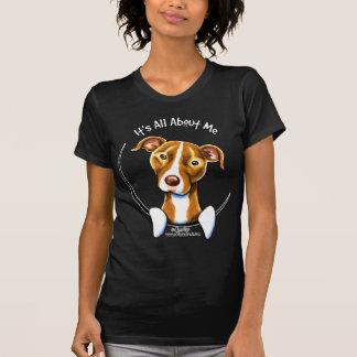 T-shirt Pitbull : : Il est tout au sujet de moi