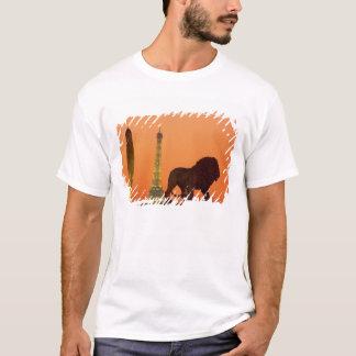 T-shirt Place de la Concorde ; Tour Eiffel ; Obélisque ;