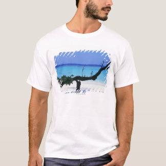 T-shirt Plage sablonneuse 8