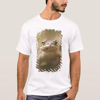 T-shirt Plan rapproché de crapaud