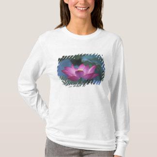 T-shirt Plan rapproché de fleur de lotus rouge et de