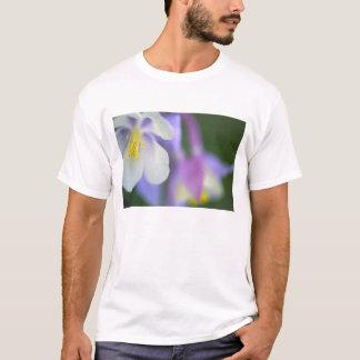 T-shirt Plan rapproché de fleur du Colorado Columbine