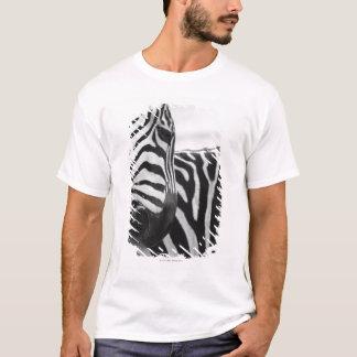 T-shirt Plan rapproché de visage et d'épaule de zèbre