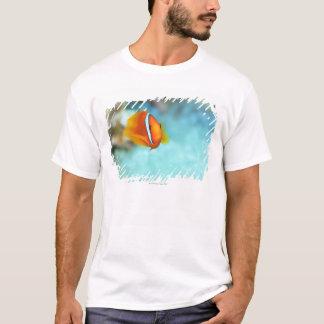 T-shirt Plan rapproché des poissons d'anémone de tomate,