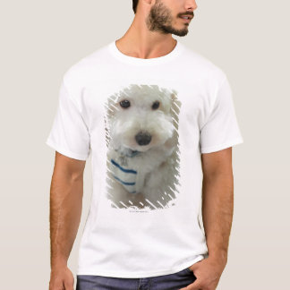 T-shirt Plan rapproché d'un caniche miniature