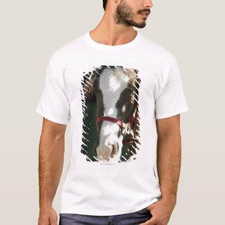 T-shirt Plan rapproché d'un cheval