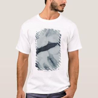 T-shirt Plan rapproché d'un rayon X dentaire