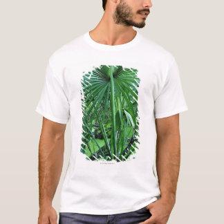 T-shirt Plantes tropicales dans l'étang de sel