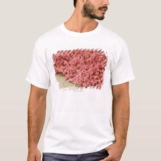 T-shirt Plaque-formation des bactéries, balayage coloré