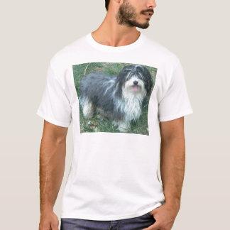 T-shirt plein havanese
