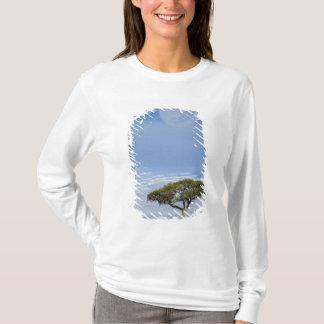 T-shirt Pleine lune au-dessus des arbres d'acacia, masais