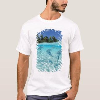T-shirt Poissons en mer