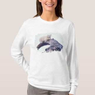T-shirt Polaire concernez le dessus d'un os de mâchoire de