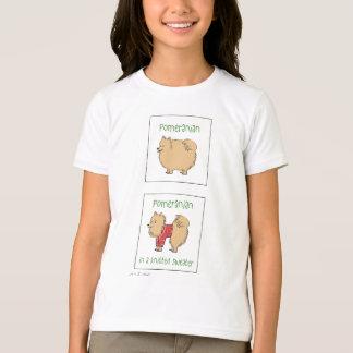 T-shirt Pomeranian dans un chandail tricoté