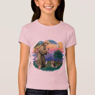 T-shirt Pomeranian (t)