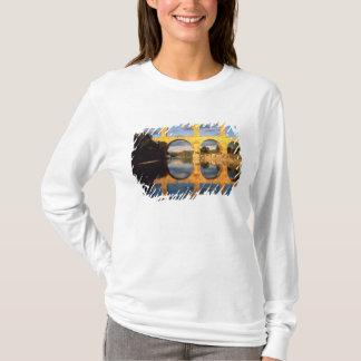 T-shirt Pont du le Gard, rivière de Gardon, le Gard,