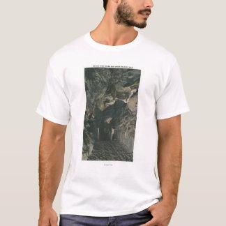 T-shirt Pont sous la vue de roche d'équilibre