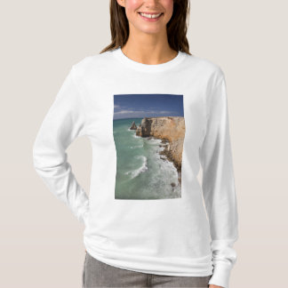 T-shirt Porto Rico, côte ouest, Cabo Rojo, littoral