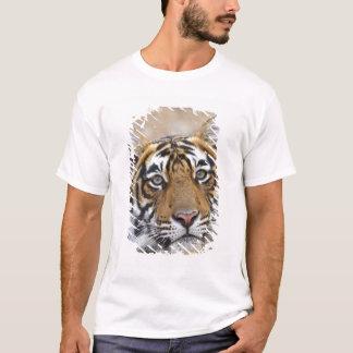 T-shirt Portrait de tigre de Bengale royal, Ranthambhor