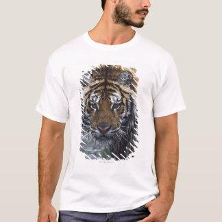 T-shirt Portrait de tigre sibérien humide