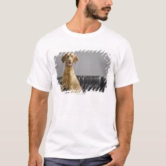 T-shirt Portrait d'un chien