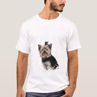 T-shirt Portrait d'un chien de Yorkshire Terrier