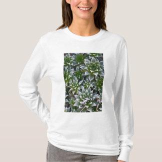T-shirt Poule et poussins succulents avec le gel dans le
