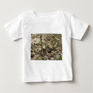 T-shirt Pour Bébé Jeune asperge verte poussant de la terre