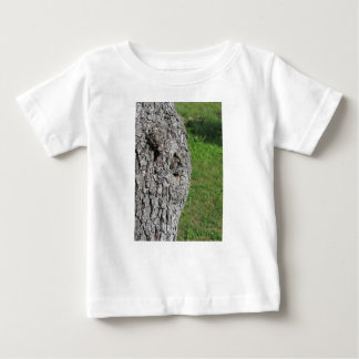 T-shirt Pour Bébé Tronc de poirier sur le fond vert