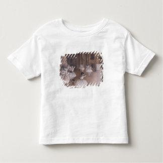 T-shirt Pour Les Tous Petits Répétition de ballet d'Edgar Degas | sur l'étape,